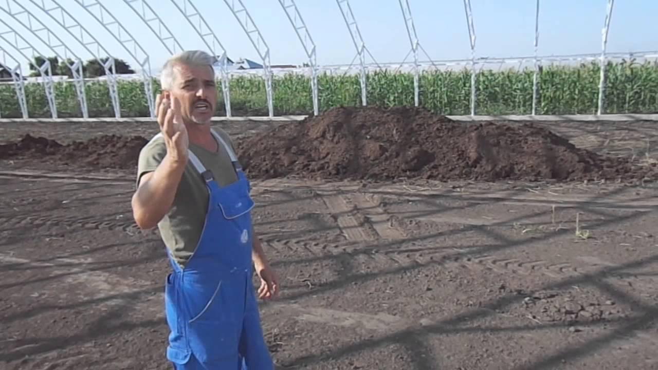 Cum se face dezinfectia solului - Blog-ul p5net.ro