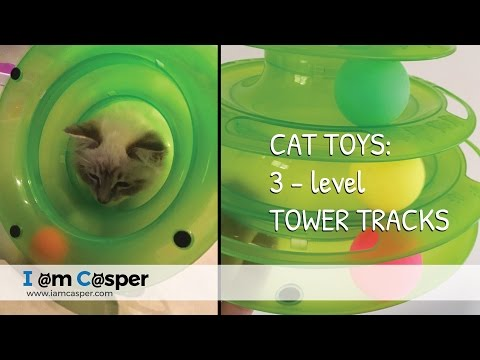 Cat toys - interactive three level track ball toy