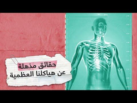 معلومات مذهلة عن عظام الإنسان