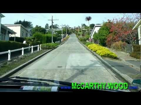We Drive a Campervan up the Steepest Street in the World - Baldwin Street, NZ