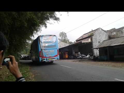 Telolet Bus Nafit Trans Shd Keluar Dari Obyek Wisata Linggo Asri