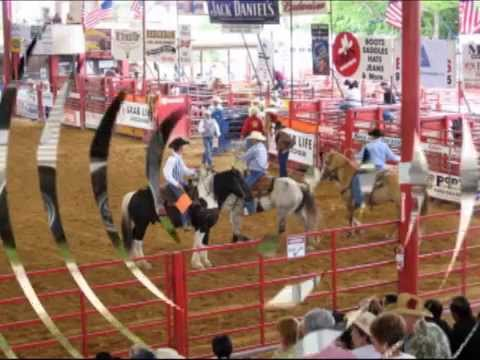 from Leroy davie florida gay rodeo