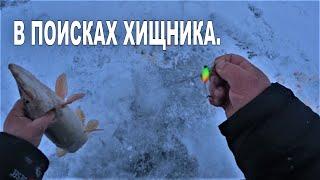 Зимняя рыбалка 2019-2020 г. В поисках хищника.