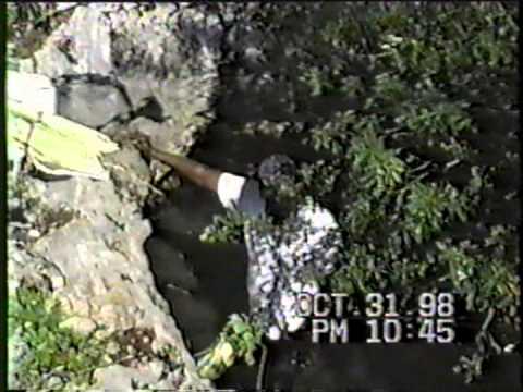 Cat Island The Bahamas 1998 Smith's Bay Mr Carol Johnson preparing sisal and talking about his days