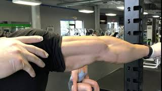 What A Biceps Split Looks like