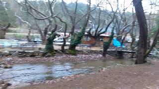 Bergama Kozak kamp alanı