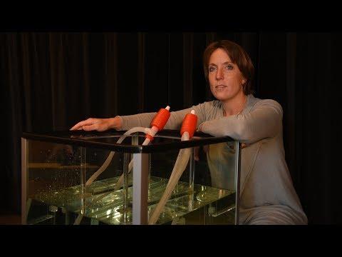 Vasamuseets pedagoger: Föremål från havsbotten och teknik på riktigt