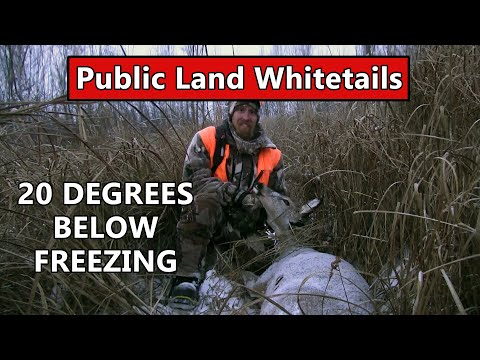 Public Land Deer Hunting In Central Minnesota - Public Land Whitetails