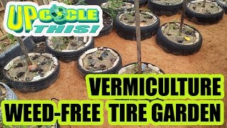 UPCYCLE THIS how to weed-free vermiculture worm tire garden NEWSPAPER GARDENING METHOD