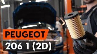 Kako zamenjati oljni filter in motorna olja na PEUGEOT 206 1 (2D) [VODIČ AUTODOC]