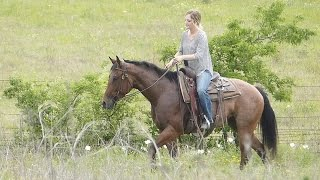 Sassy Zips Tivio - trail riding - ValleyViewRanch.net