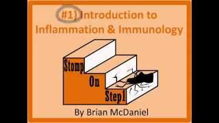 Adaptive vs. Innate Immunity, Humoral vs. Cell-mediated Immunity PAMP
