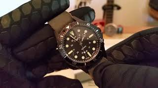 timex watch price