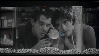 Бойцовая рыбка, 1983, Фрэнсис Форд Коппола, фрагмент