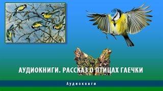 Аудиокниги. Пришвин рассказ о птицах Гаечки