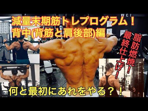 【減量末期 脂肪燃焼筋トレプログラム】背中トレーニング編