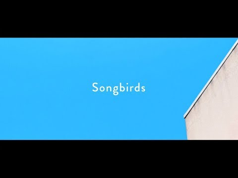 HomecomingsSongbirdsOfficial Music Video