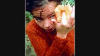 Björk Vísur Vatnesenda Rósu: