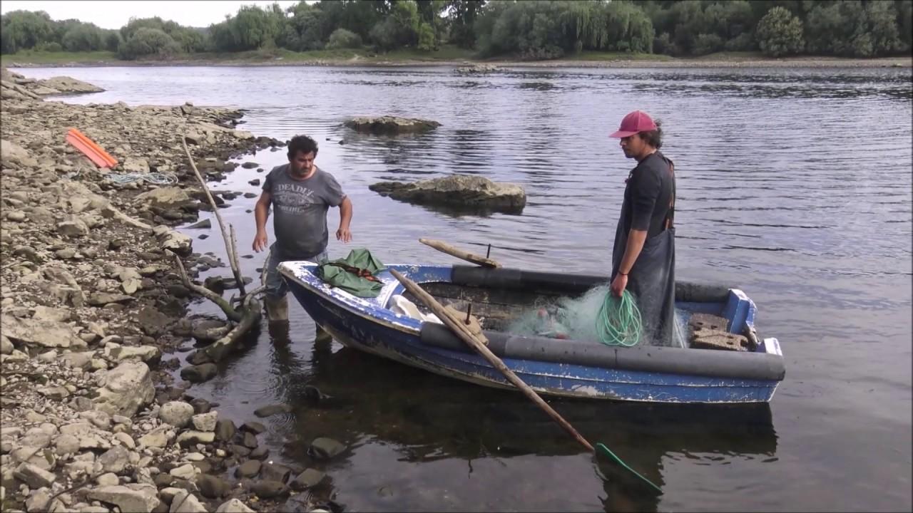 PESCA NO RIO TEJO JUNTO A ALVEGA - ABRANTES ABRIL 2017 - YouTube