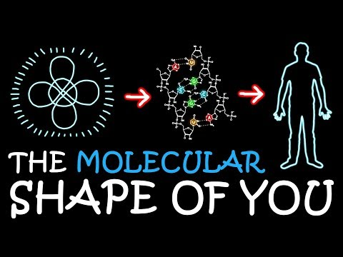 The Molecular Shape of You (Ed Sheeran Parody) | A Capella Science