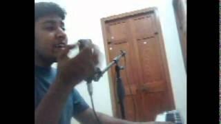 Ninaithu Ninaithu Paarthaen Karaoke cover by Raghav