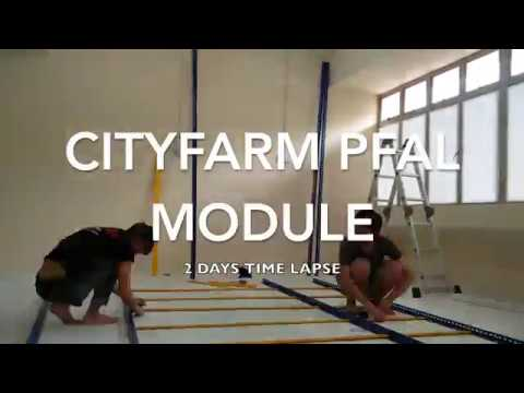 CITYFARM PFAL(Plant Factory with Artificial Lighting) Module 2 Days Time Lapse