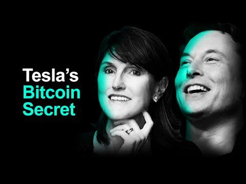 Cathie Wood Fuels Tesla Bitcoin Mining Rumors