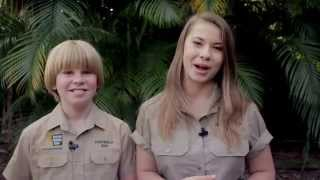 Are you the next Visionary Wildlife Warrior? thumbnail