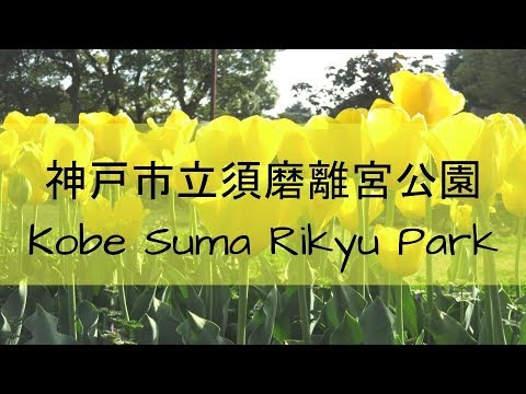 13: KOBE SUMA RIKYU PARK- APRIL 2018