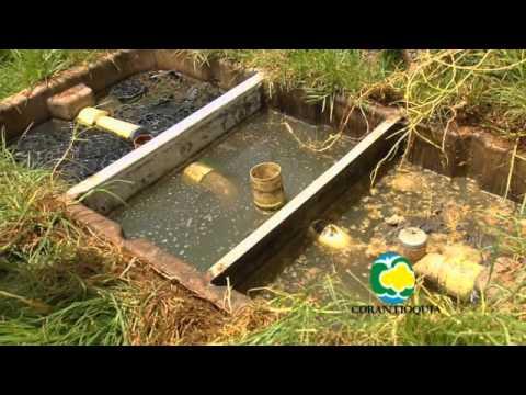 Saneamiento h drico rural e implementaci n de pozos for Criadero de cachamas en tanques
