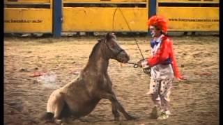 Rodeio Tony Nascimento (Tales Nascimento Palhaço Pipóquinha)
