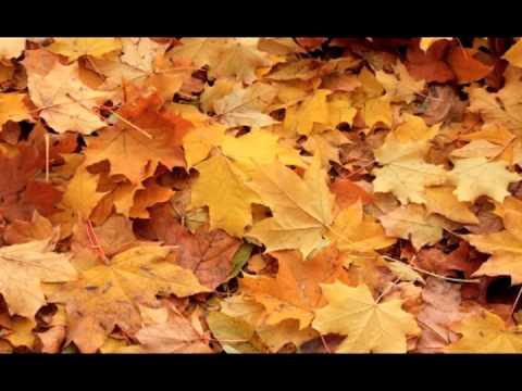 Скачать чайковский осень