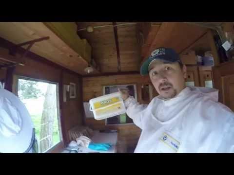Episode 10: Varroa Sommerbehandlung mit MAQS-Streifen