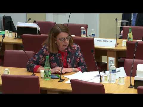 Commission des Affaires étrangères : Monsieur Franck Riester, Ministre de la Culture