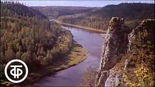 Уральский лосось (1971)