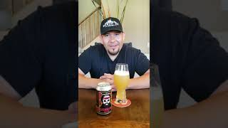 Beer Review #69- Destihl Brewing, Extended Jam Hazy IPA