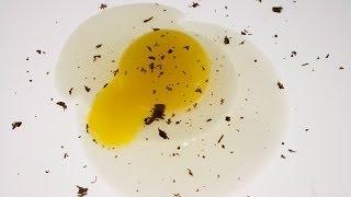 Molecular Gastronomy - Molecular Egg