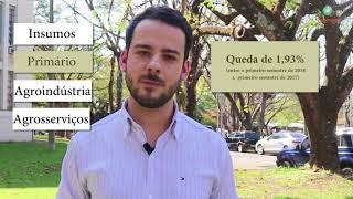 MERCADO DE TRABALHO/CEPEA: Crescem empregos no agro com maior qualificação