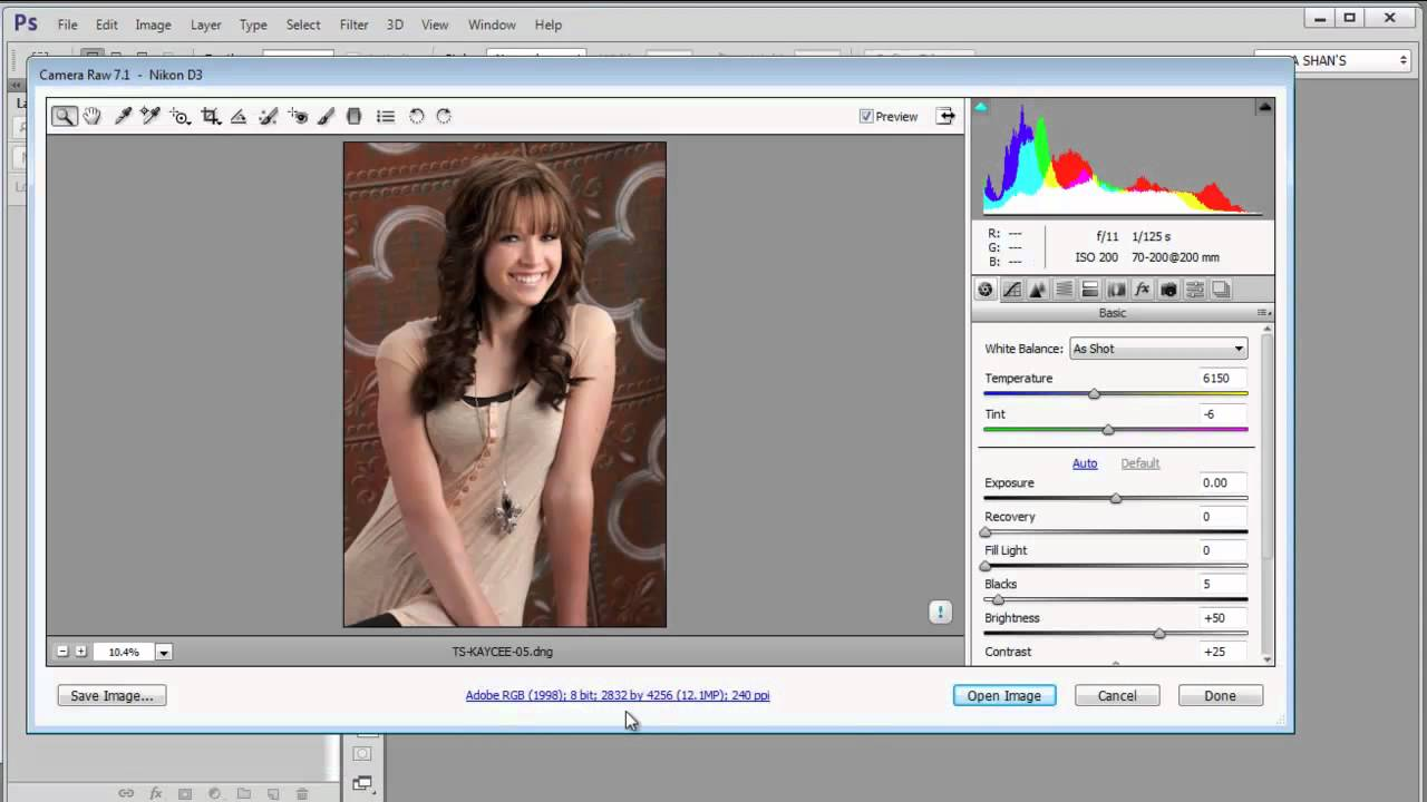 Adobe Camera Raw screenshot