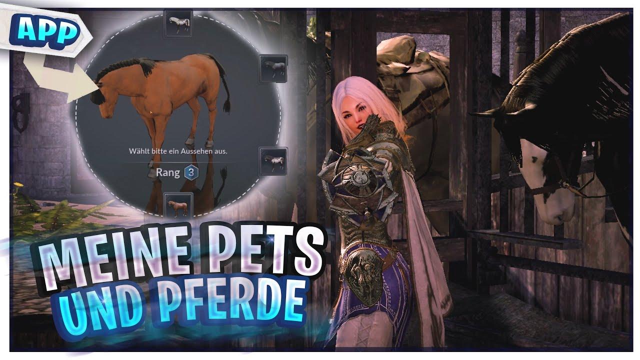 Aktuelle Online Games