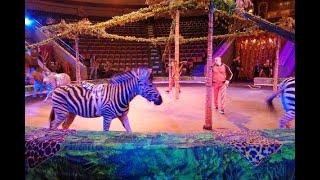 Представителей цирковых династий поздравили в Нижнем Новгороде