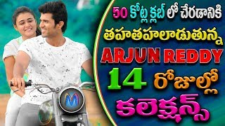 arjun reddy 14 day box office collections | Arjun Reddy Will Be Reached to 50 Crores Club