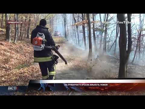 На Прикарпатті рятувальники щодня ліквідують більше 10-ти загорянь