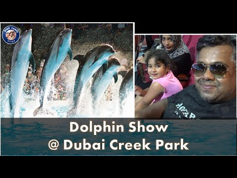 Dubai Dolphin Show Full HD । Dubai Dolphinarium Dubai । Creek Park – Part 2