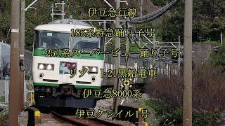 185系特急踊り子号と他 稲取2号踏切にて撮影 午後の撮影記録
