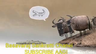 Rathaavara  sort comedy