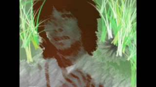 Watch Djavan Curumim video
