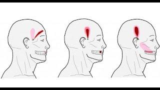 6 Points puissants pour soulager le mal de tête