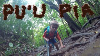 Land Family Hikes Pu'u Pia Trail - 15 Dec 2019