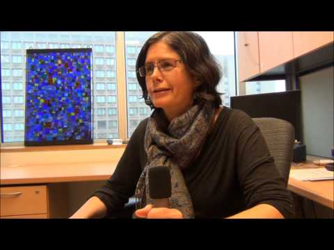 Wendy Robbins discusses the MIS program and the thesis option